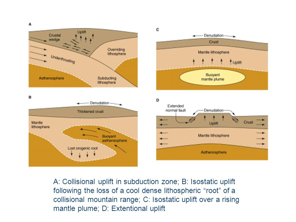 A: Collisional uplift in subduction zone; B: Isostatic uplift following the loss of a cool dense lithospheric root of a collisional mountain range; C: Isostatic uplift over a rising mantle plume; D: Extentional uplift