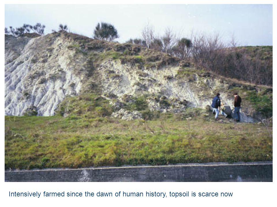 Intensively farmed since the dawn of human history, topsoil is scarce now