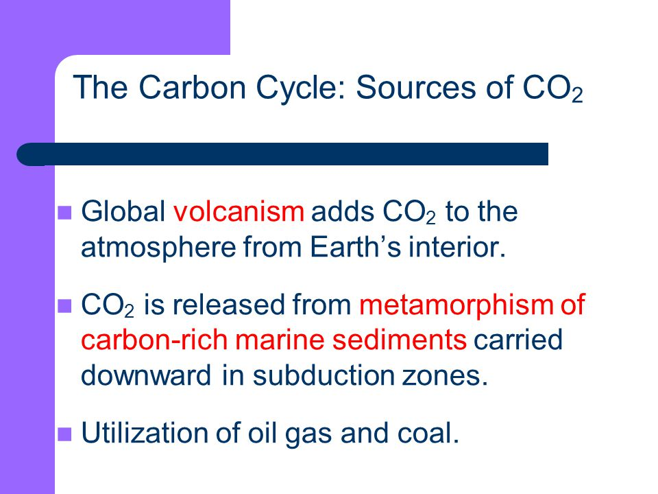 The Carbon Cycle: Sources of CO2