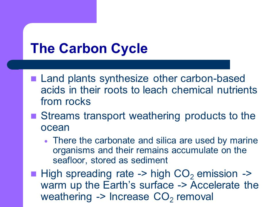 The Carbon Cycle Land plants synthesize other carbon-based acids in their roots to leach chemical nutrients from rocks.