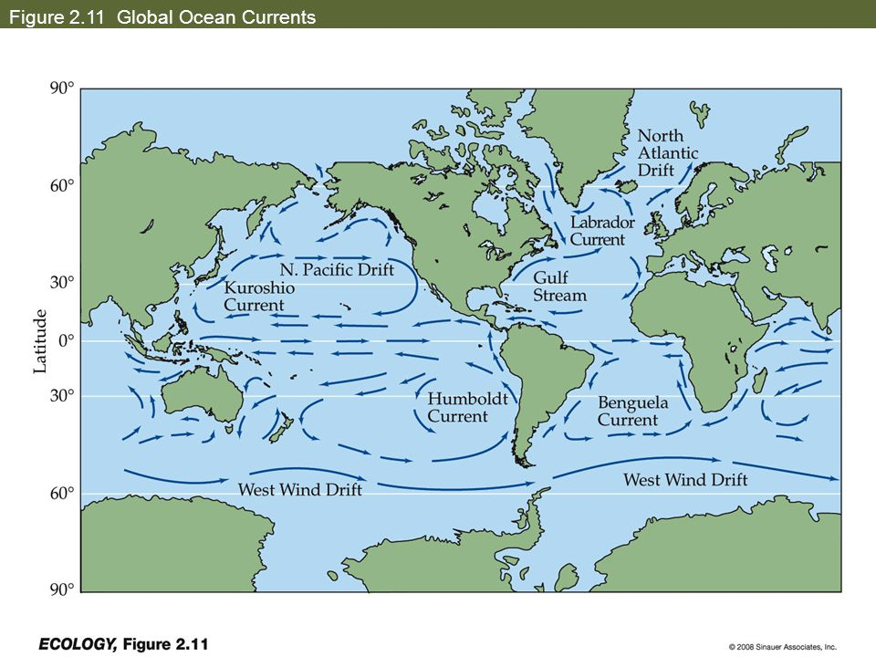 Figure 2.11 Global Ocean Currents