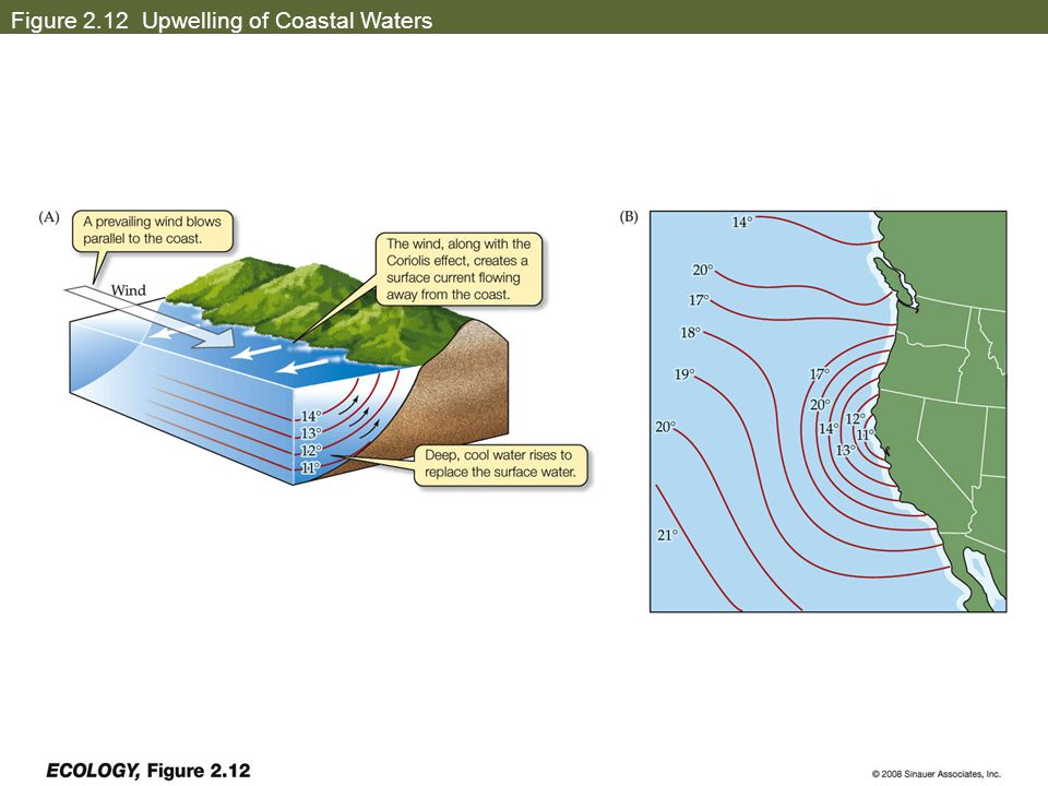 Figure 2.12 Upwelling of Coastal Waters
