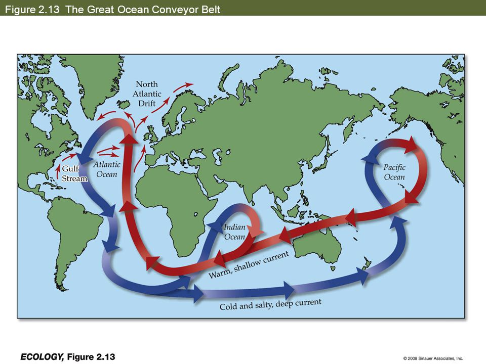 Figure 2.13 The Great Ocean Conveyor Belt