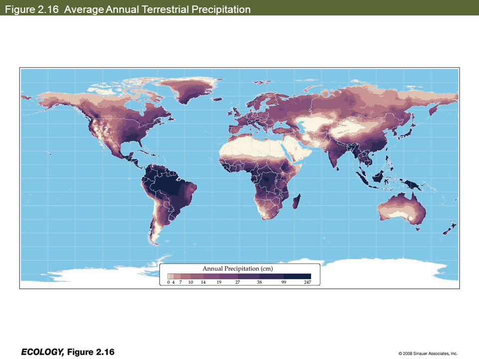 Figure 2.16 Average Annual Terrestrial Precipitation