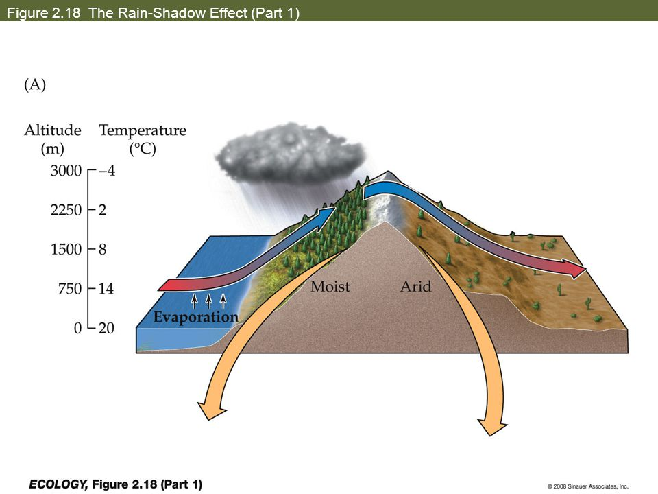 Figure 2.18 The Rain-Shadow Effect (Part 1)