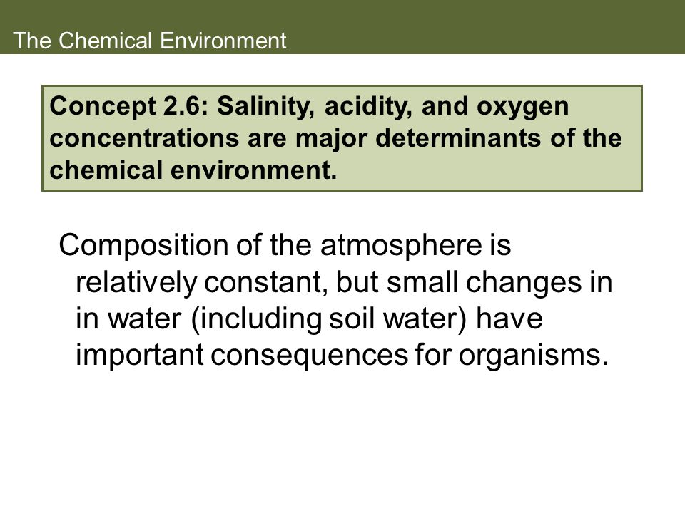 The Chemical Environment