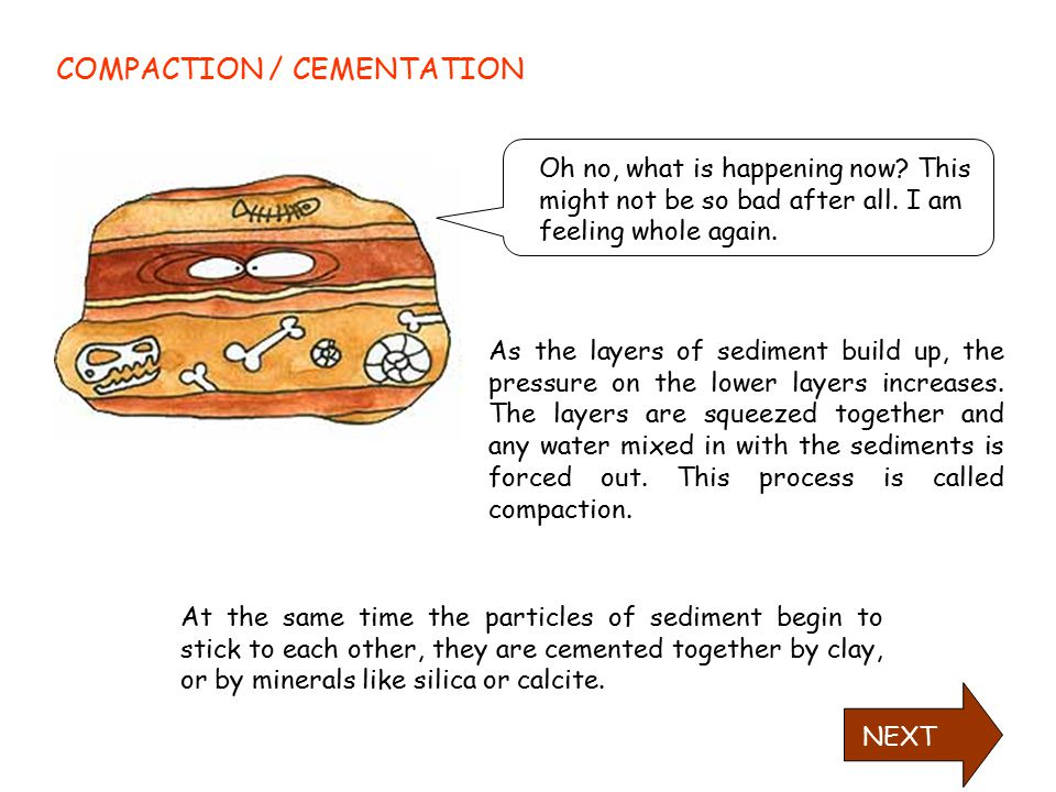 COMPACTION / CEMENTATION
