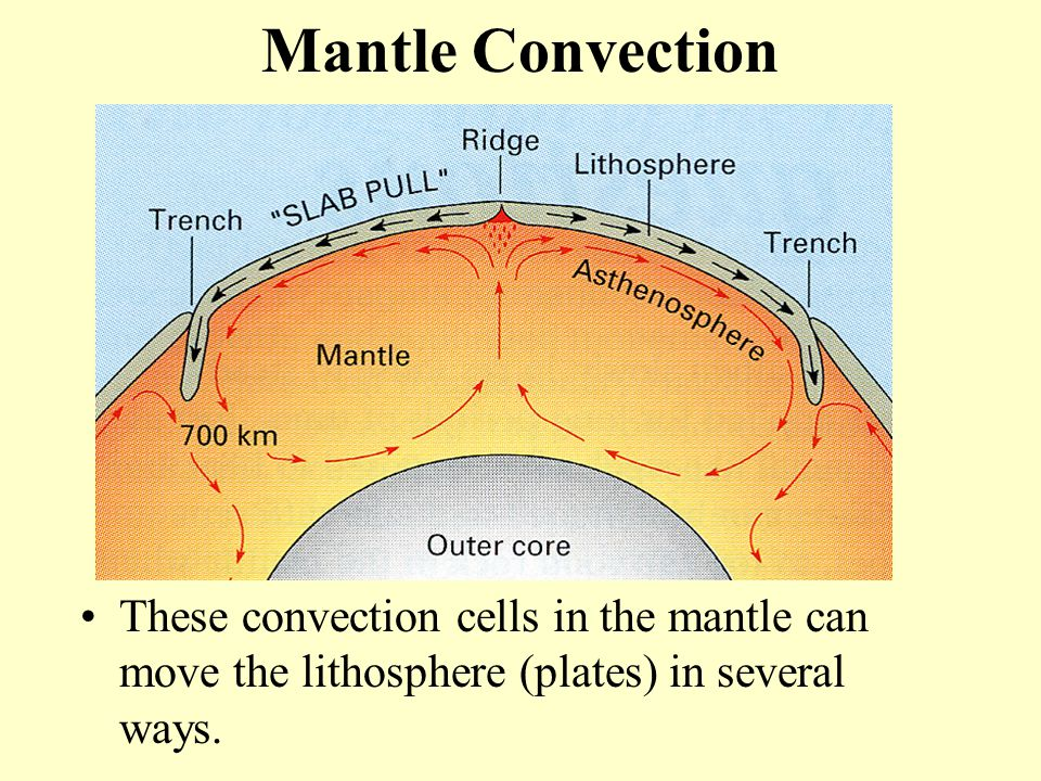 Mantle Convection These convection cells in the mantle can move the lithosphere (plates) in several ways.