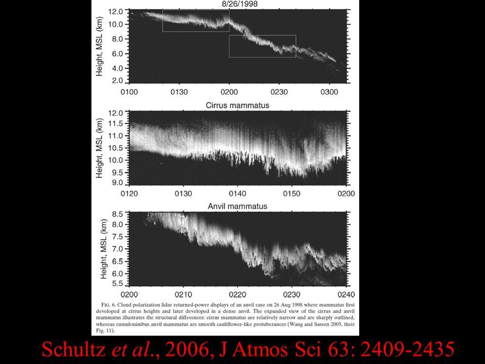 Schultz et al., 2006, J Atmos Sci 63: 2409-2435