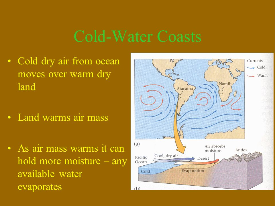 Cold-Water Coasts Cold dry air from ocean moves over warm dry land