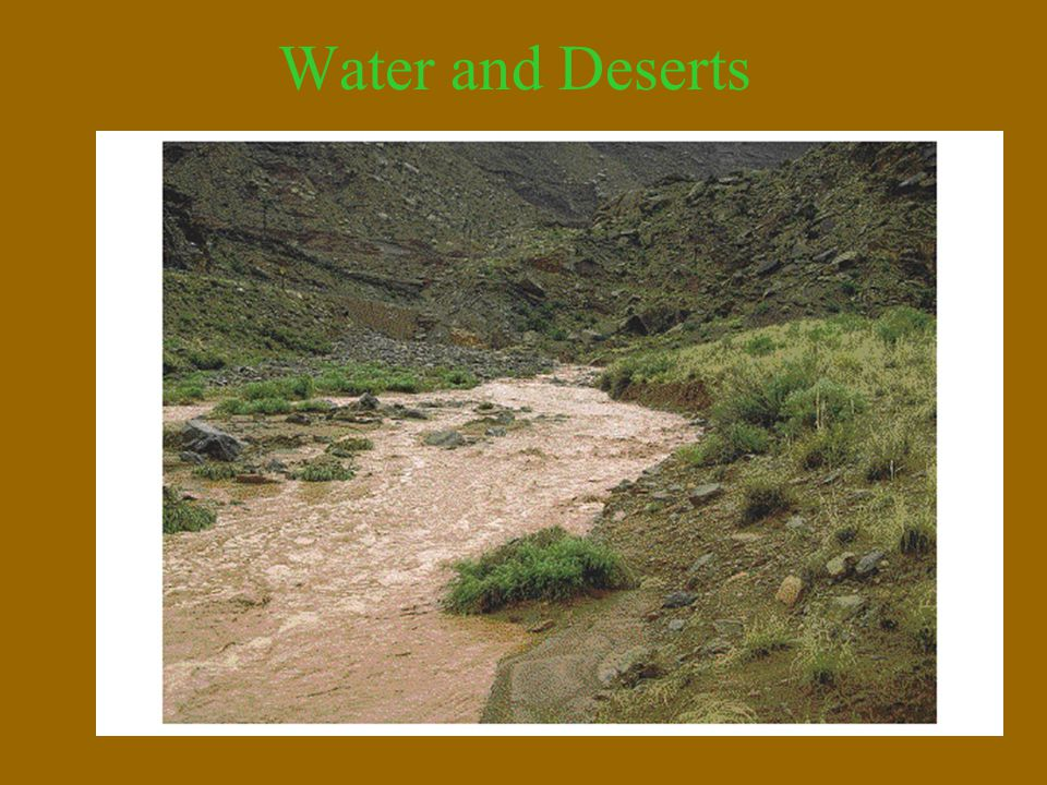 Water and Deserts Ephemeral streams are present in desert areas