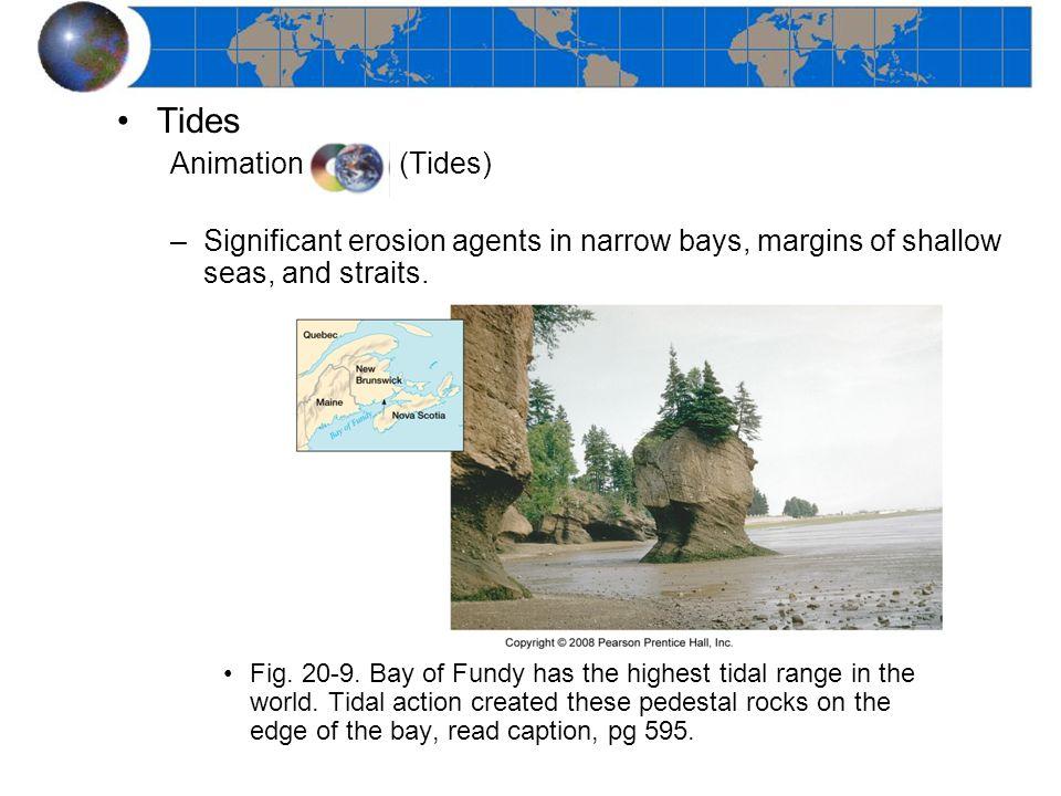 Tides Animation (Tides)
