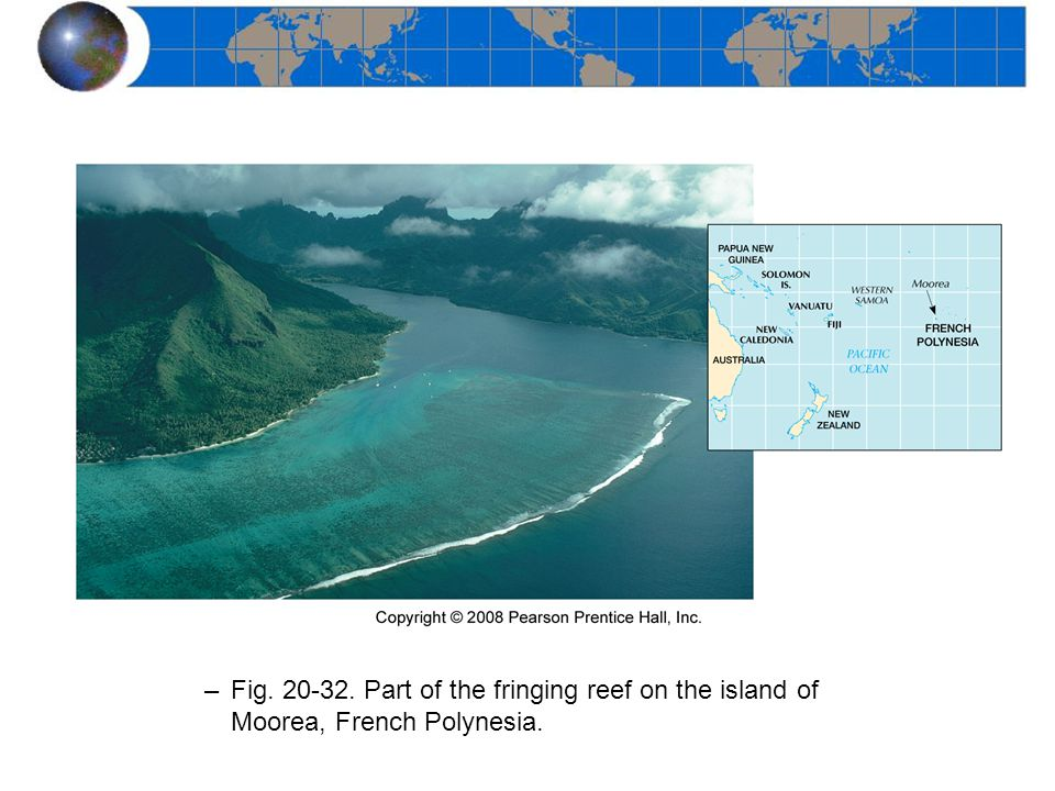 Fig. 20-32. Part of the fringing reef on the island of Moorea, French Polynesia.
