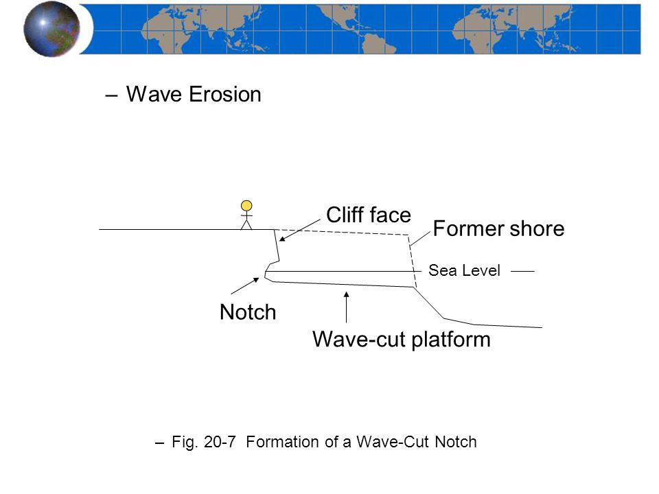 Wave Erosion Cliff face Former shore Notch Wave-cut platform Sea Level