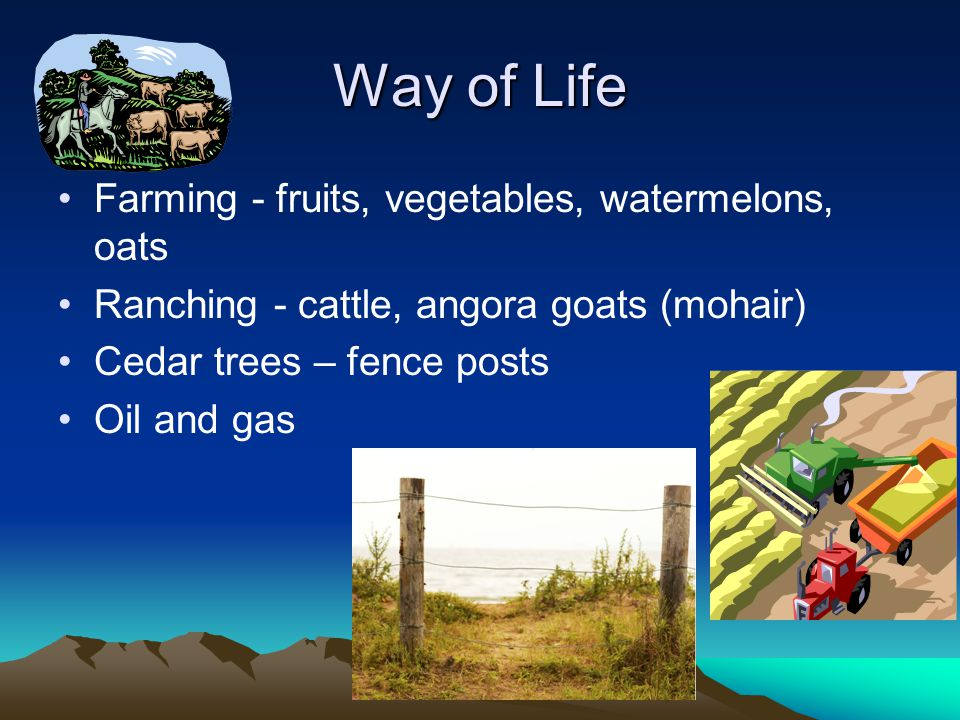 Way of Life Farming - fruits, vegetables, watermelons, oats