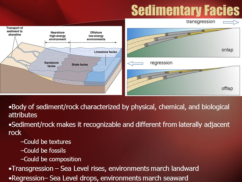 Sedimentary Facies Body of sediment/rock characterized by physical, chemical, and biological attributes.