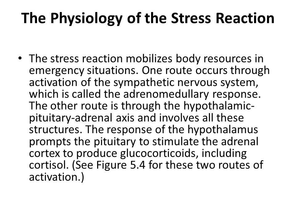 The Physiology of the Stress Reaction