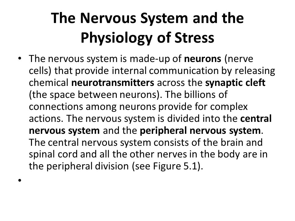 The Nervous System and the Physiology of Stress