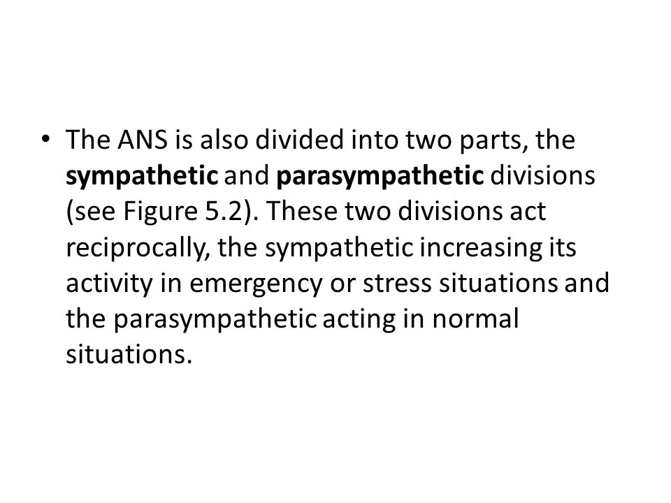 The ANS is also divided into two parts, the sympathetic and parasympathetic divisions (see Figure 5.2).