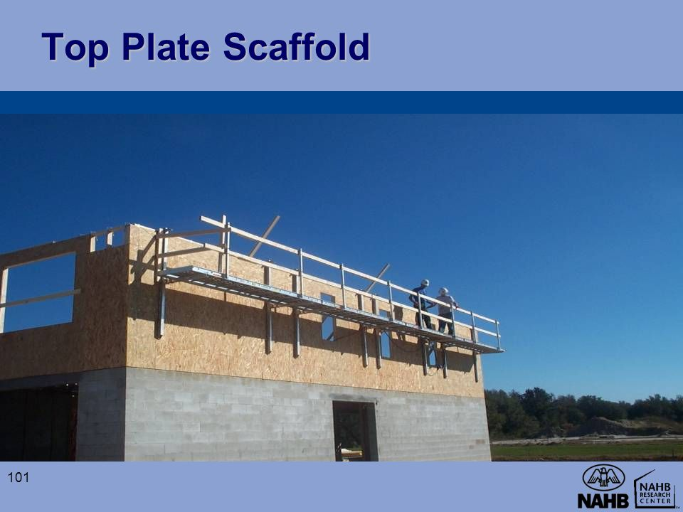 Top Plate Scaffold