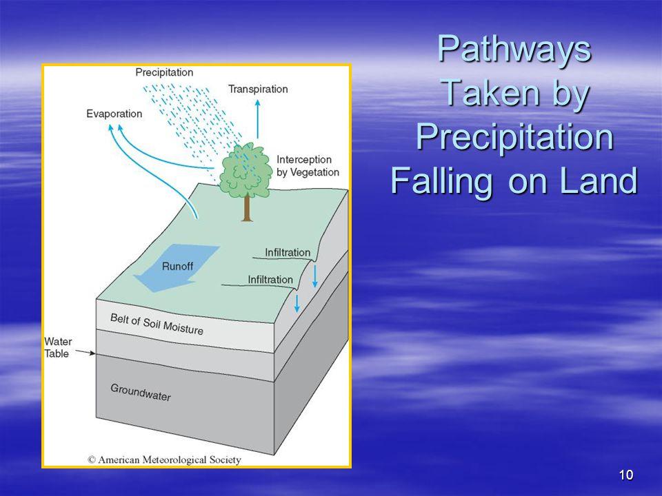 Pathways Taken by Precipitation Falling on Land