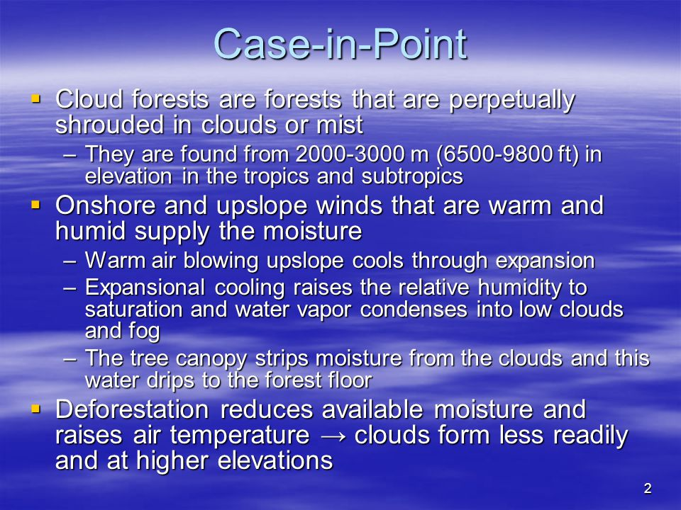 Case-in-Point Cloud forests are forests that are perpetually shrouded in clouds or mist.