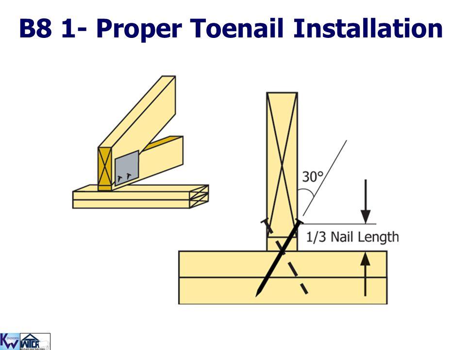 B8 1- Proper Toenail Installation
