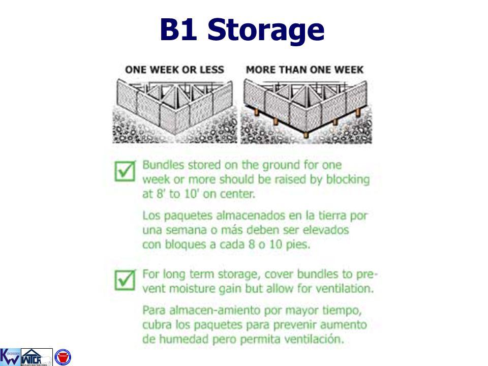B1 Storage