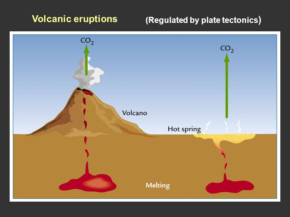 Volcanic eruptions (Regulated by plate tectonics)