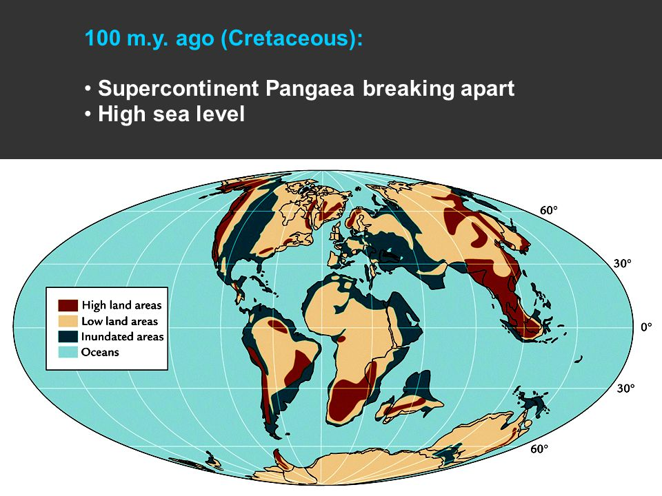100 m.y. ago (Cretaceous): Supercontinent Pangaea breaking apart High sea level