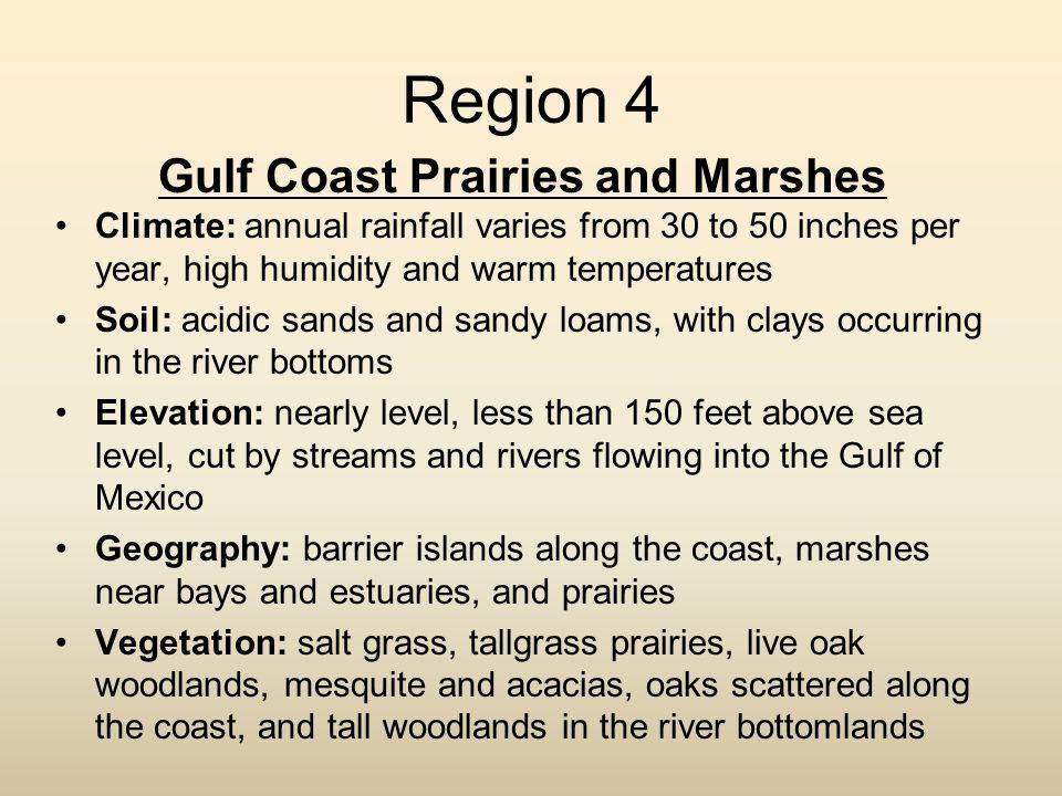 Gulf Coast Prairies and Marshes