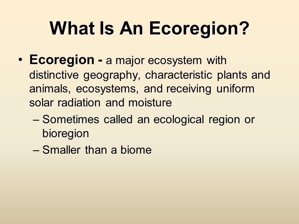 What Is An Ecoregion