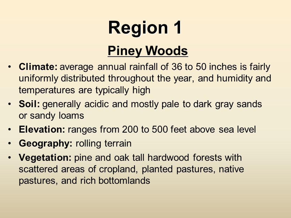 Region 1 Piney Woods.