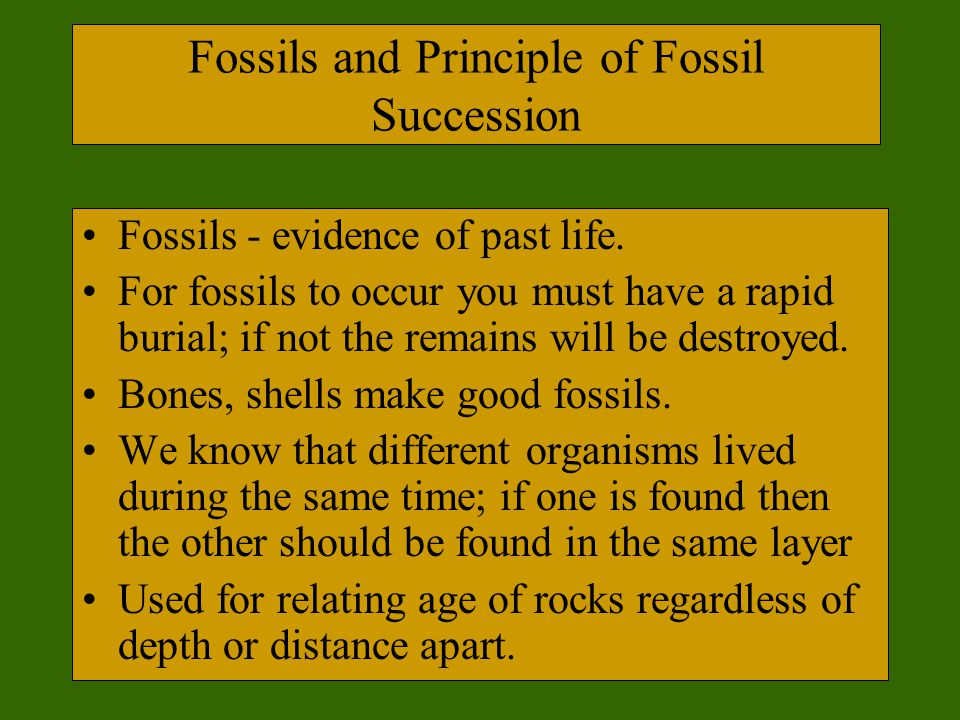 Fossils and Principle of Fossil Succession