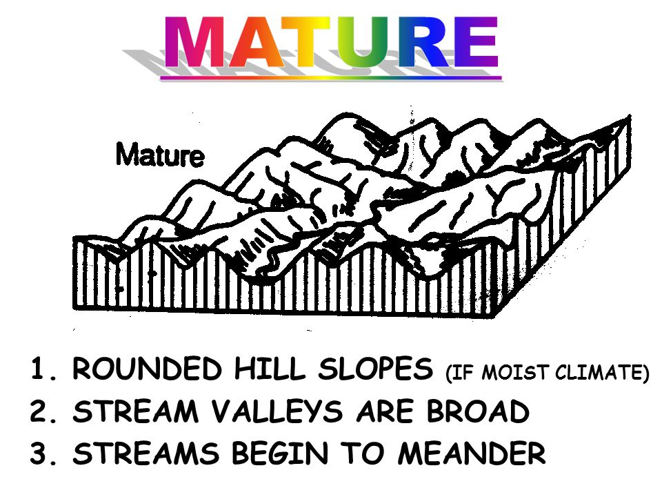 MATURE 1. ROUNDED HILL SLOPES (IF MOIST CLIMATE)