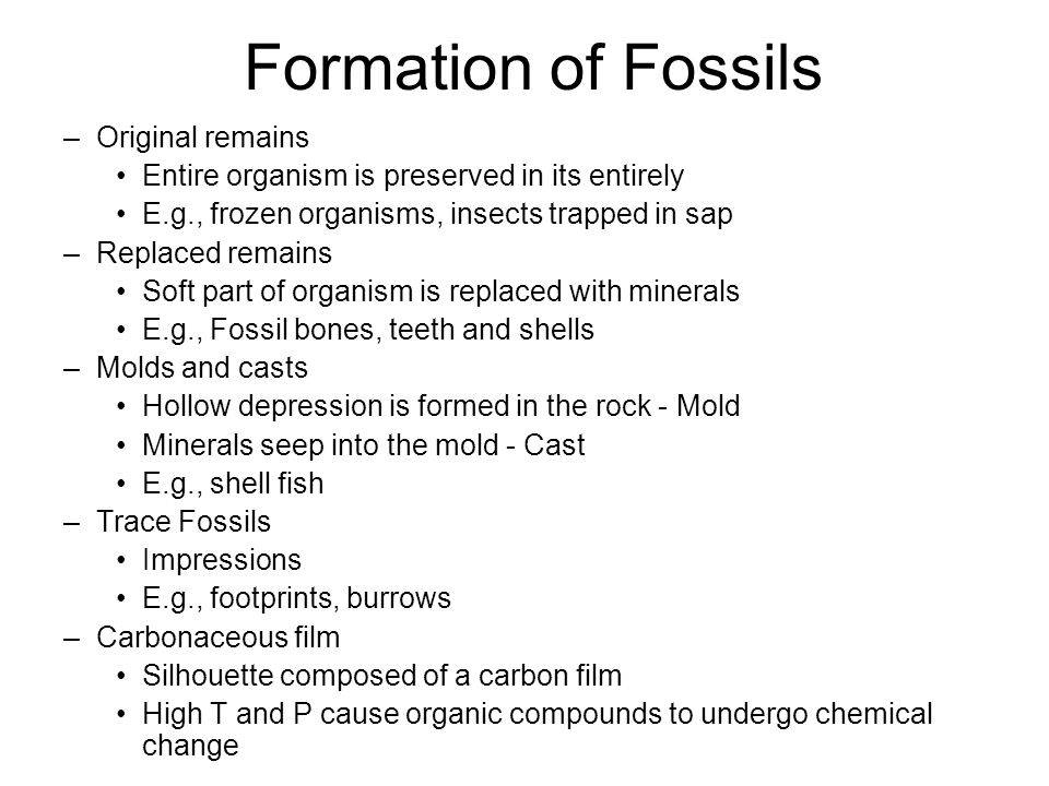 Formation of Fossils Original remains