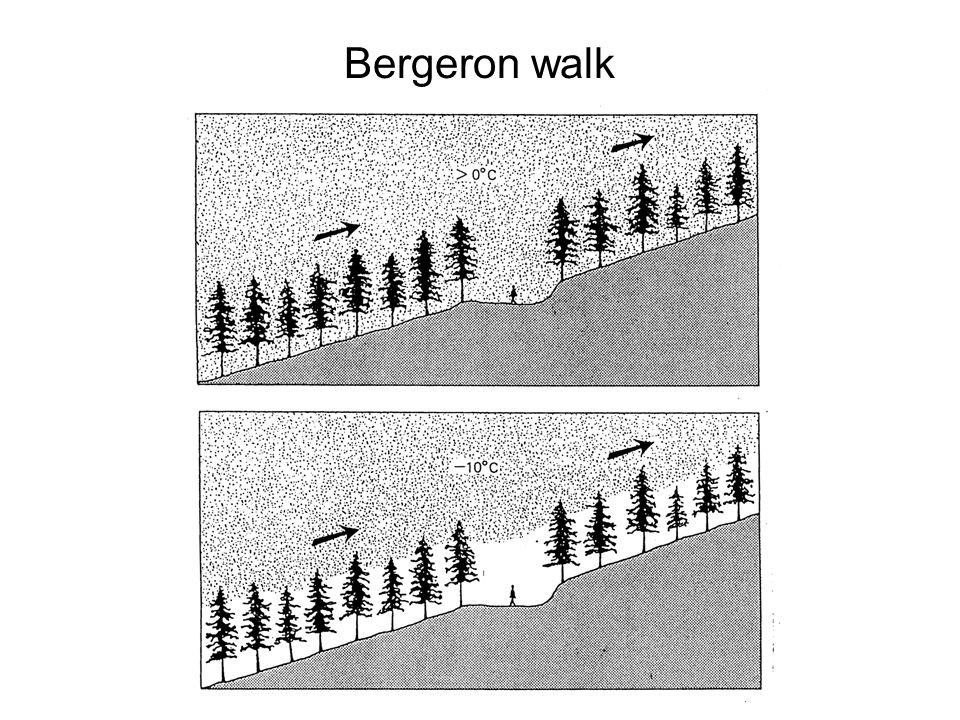 Bergeron walk