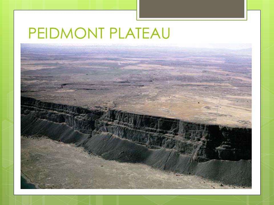 PEIDMONT PLATEAU