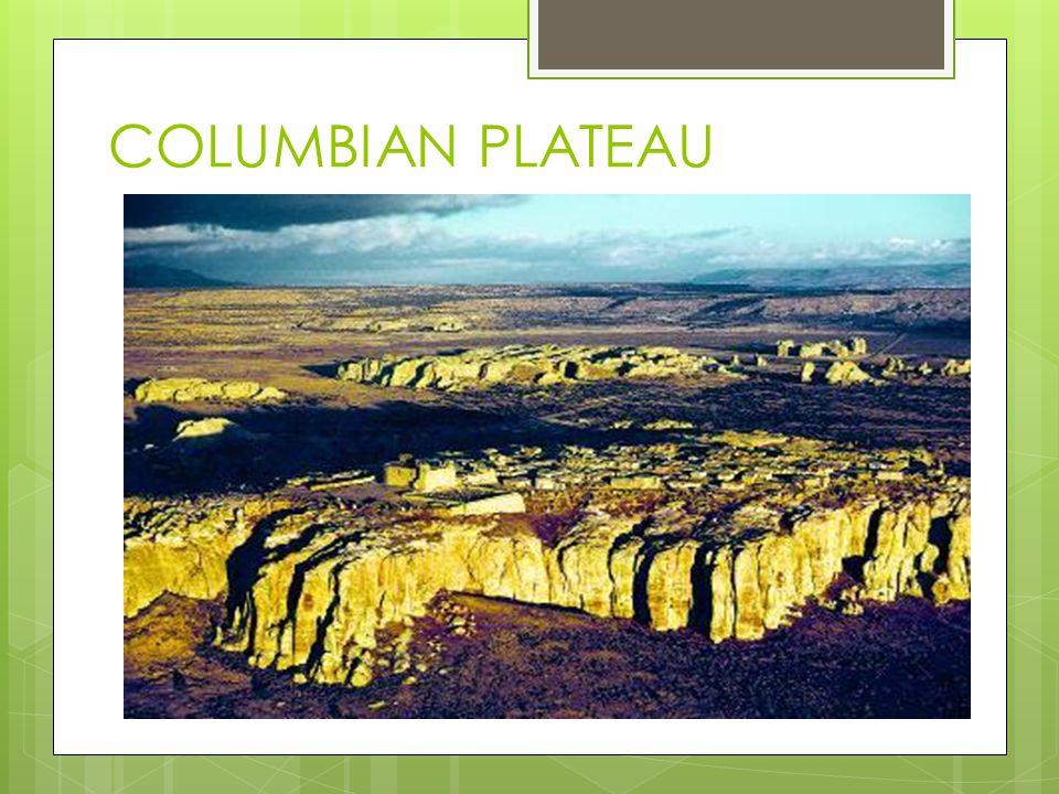 COLUMBIAN PLATEAU