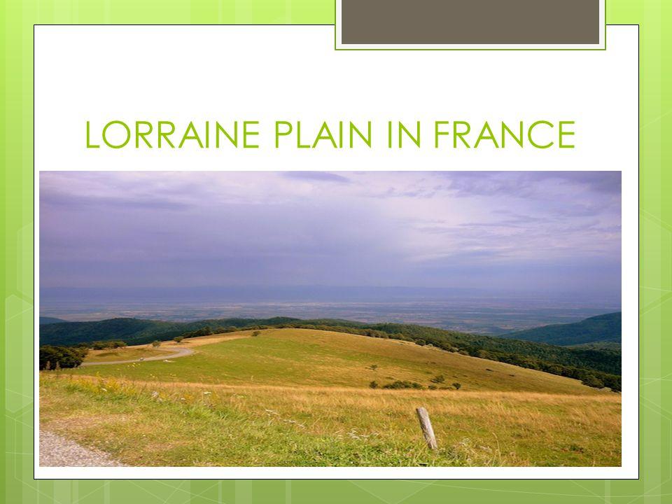 LORRAINE PLAIN IN FRANCE