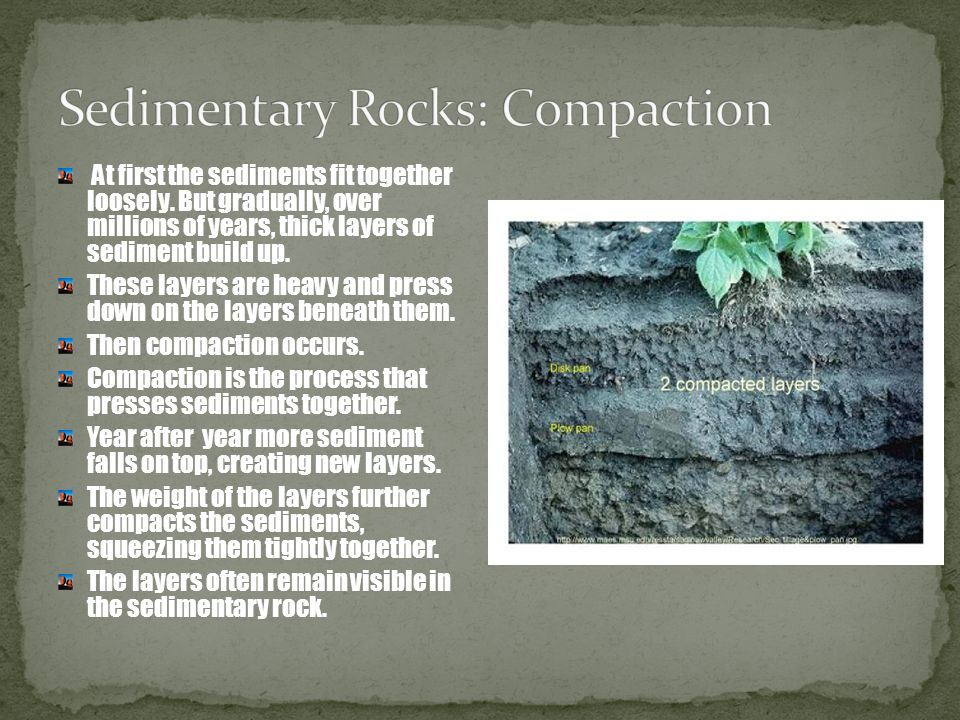 Sedimentary Rocks: Compaction