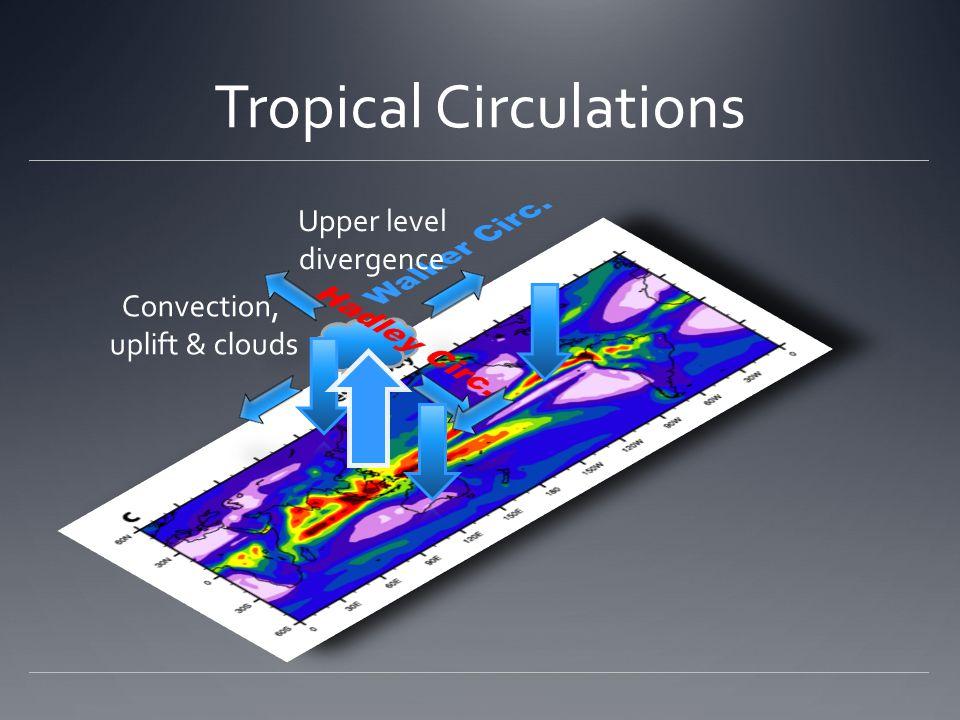 Tropical Circulations