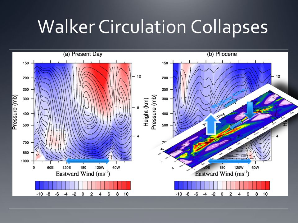 Walker Circulation Collapses