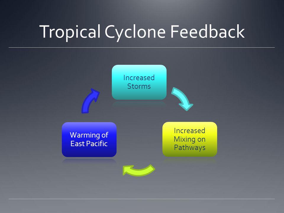 Tropical Cyclone Feedback