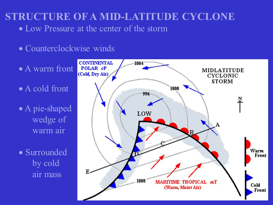 STRUCTURE OF A MID-LATITUDE CYCLONE