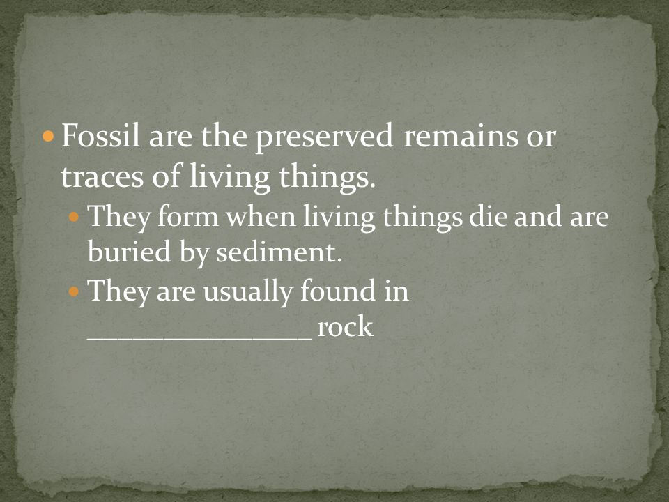 Fossil are the preserved remains or traces of living things.