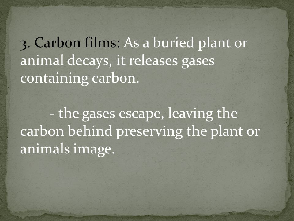 3. Carbon films: As a buried plant or animal decays, it releases gases containing carbon.