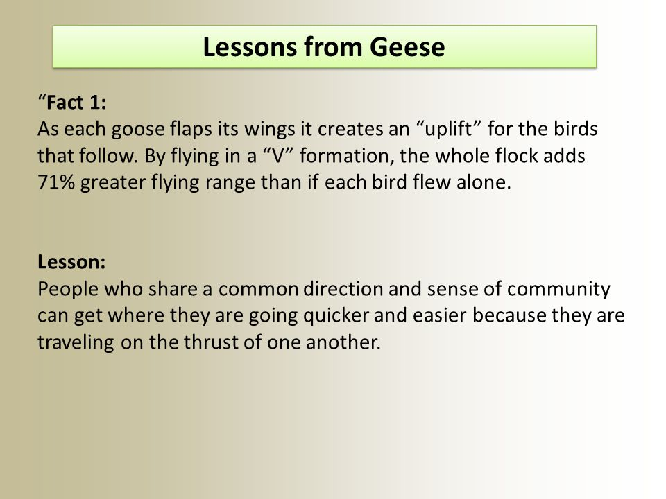 Lessons from Geese Fact 1: