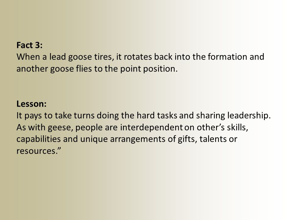 Fact 3: When a lead goose tires, it rotates back into the formation and another goose flies to the point position.