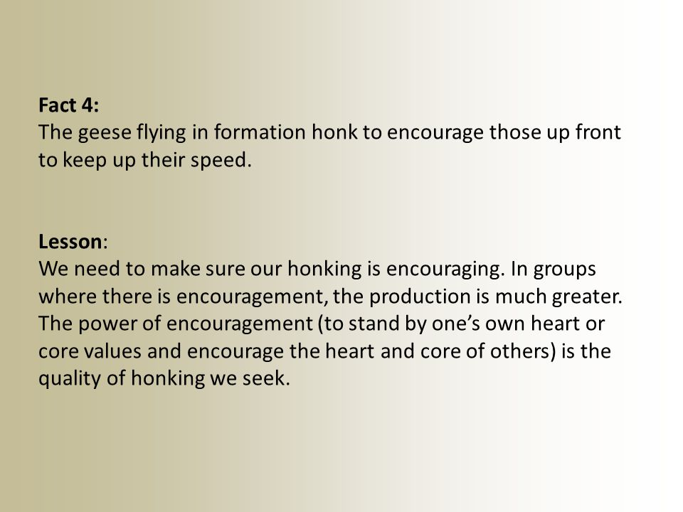 Fact 4: The geese flying in formation honk to encourage those up front to keep up their speed. Lesson:
